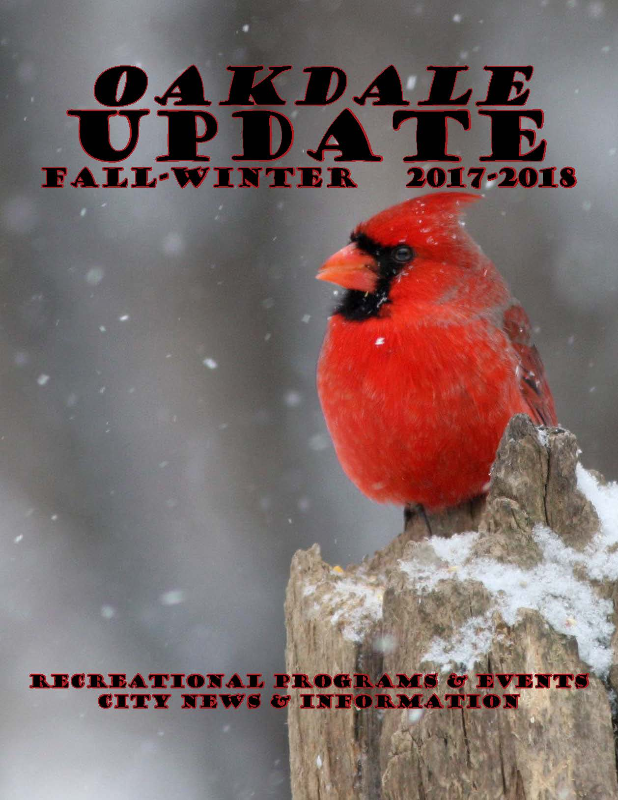 Cardinal in snow on cover of city newsletter Fall Winter 2017 issue