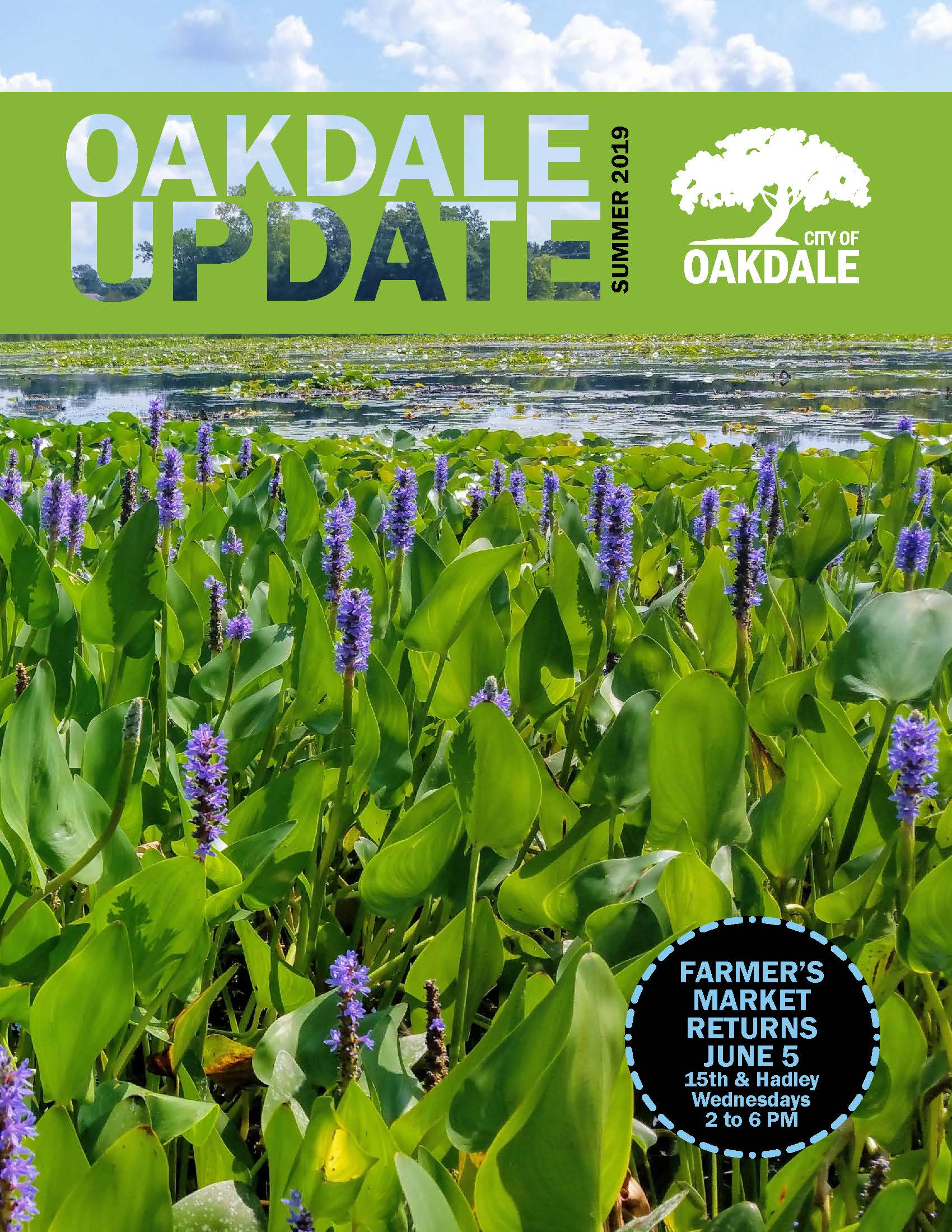 Cover of Oakdale Update Newsletter for Summer 2019 showing flowers in wetland