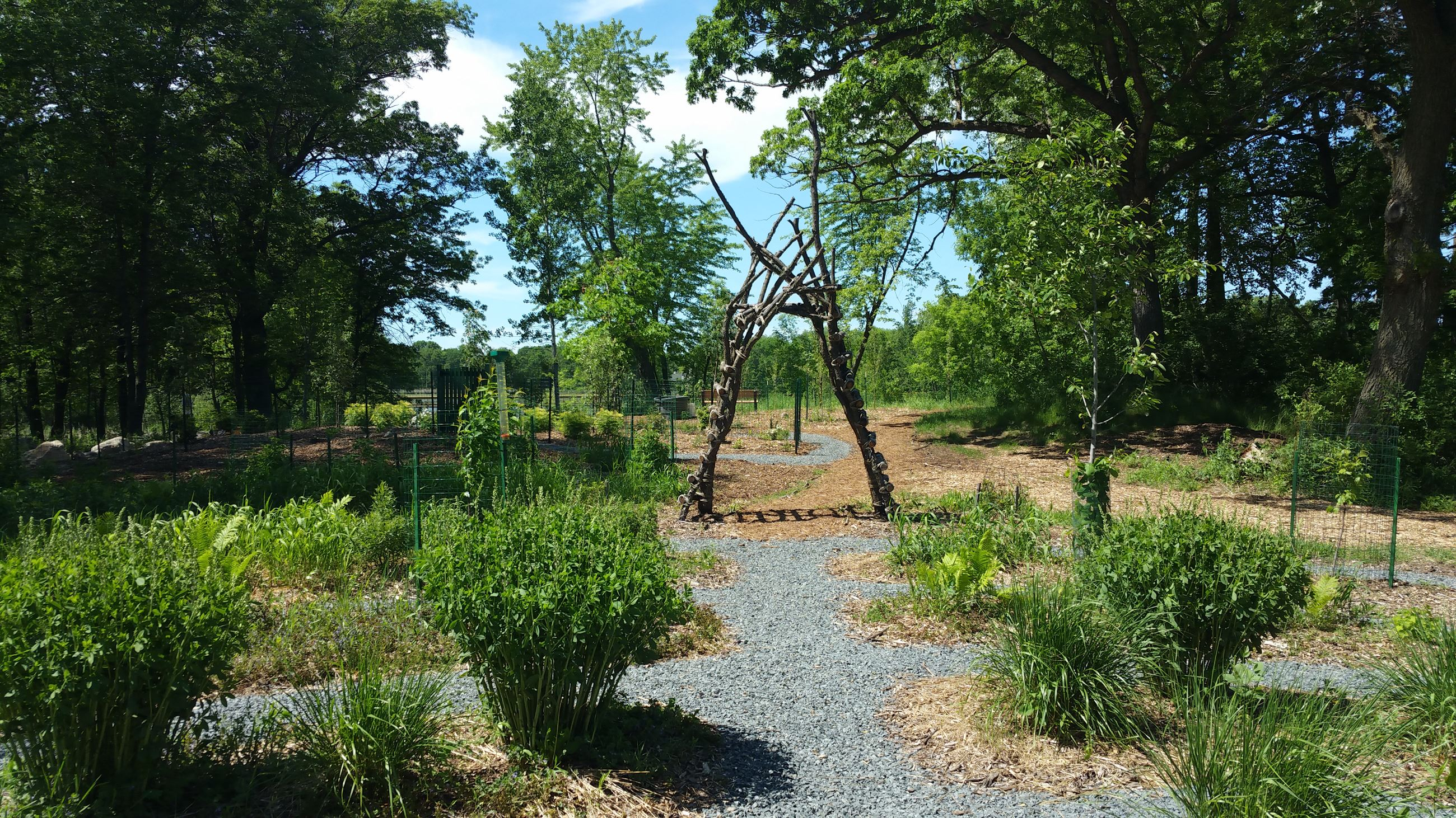 Image of Oakdale Nature Preserve Forest Garden